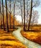 Landschaft, Wald, Baum, Bach