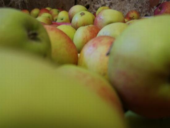 Stillleben, Apfel, Digital, Digitale kunst,
