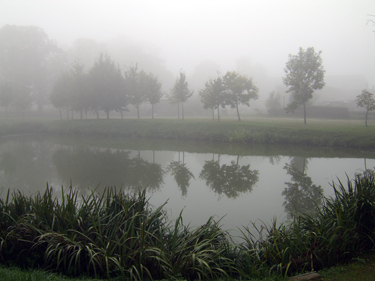 Zorn, Teich, Dorf, Landschaft, Fotografie