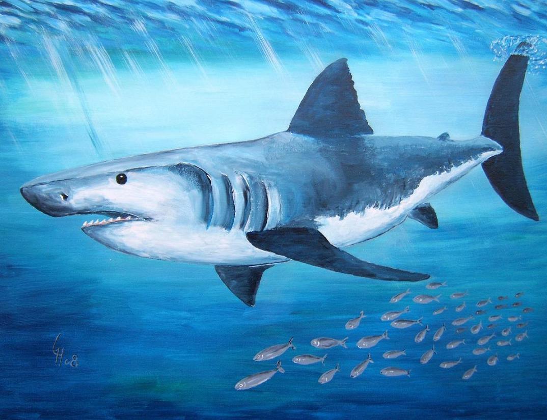 Kunstnet Werke Malerei Tiere Der Hai Und Sein Gefolge