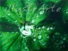 Wasser, Diva, Airbrush, Erotik