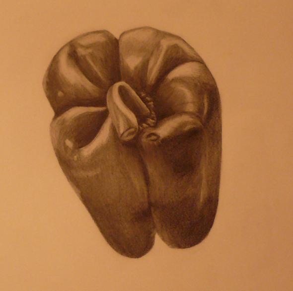 Paprika, Stillleben, Zeichnung, Bleistiftzeichnung, Gemüse, Zeichnungen