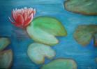 Acrylmalerei, Wasser, Seerosen, Rose