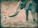 Fotografie, Elefant, Wärme, Menschen
