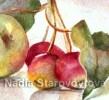 Natur, Rot, Apfel, Aquarellmalerei
