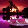Sonnenuntergang, Meer, Rot, Palmen