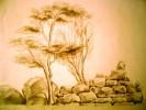 Baum, Bleistiftzeichnung, Stein, Skizze