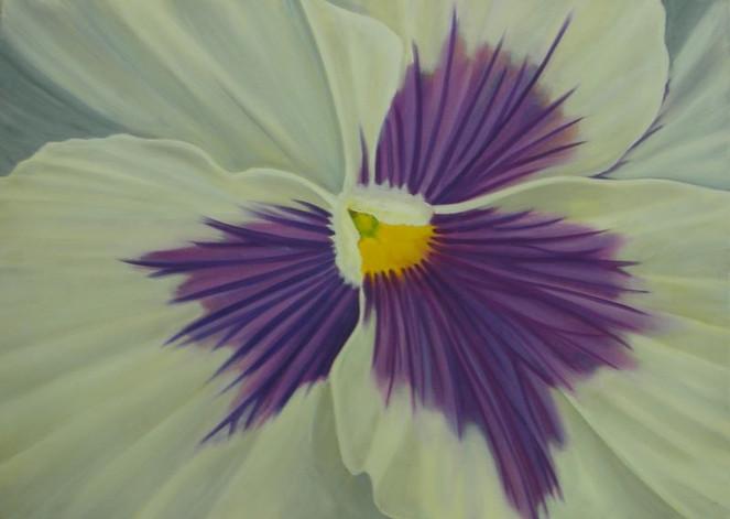 Hornveilchen, Blumen, Stiefmütterchen, Malerei, Fotorealismus, Ölmalerei