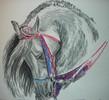 Pferde, Pastellmalerei, Figural, Malerei