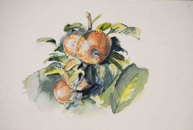 Apfel, Garten, Aquarell,