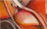 Abstrakt, Malerei, Bauch