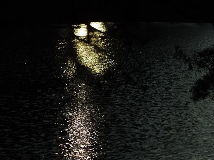 Spiegelung, Wasser, Licht, See, Schatten, Abendlicht
