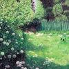 Garten, Blumne, Licht und schatten, Bärlauch
