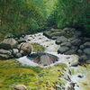 Wildbach, Romantisch, Schwarzwald, Wasser