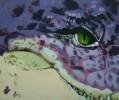 Krokodil, Reptil, Vorsicht, Zähne