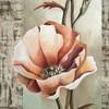 Mohn, Acrylmalerei, Blume, Blumen