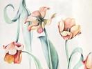 Tulpen, Blumen, Grafik, Aquarellmalerei