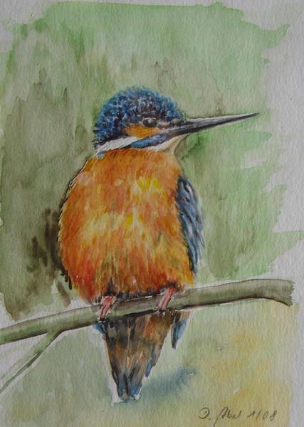 Wald, Eisvogel, Aquarellmalerei, Natur, Vogel, Malerei