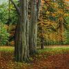 Natur, Ölmalerei, Blätter, Wald