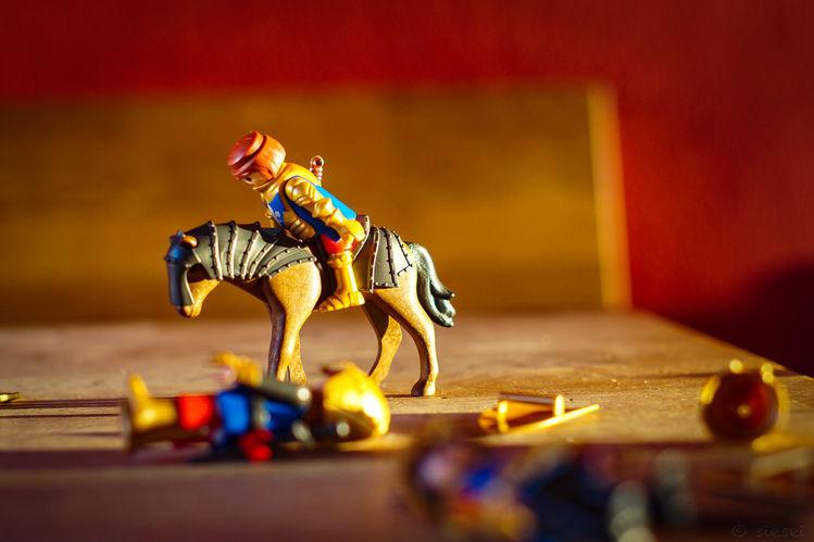 Ritter, Holztisch, Makro, Sonnenlicht, Playmobil, Fotografie
