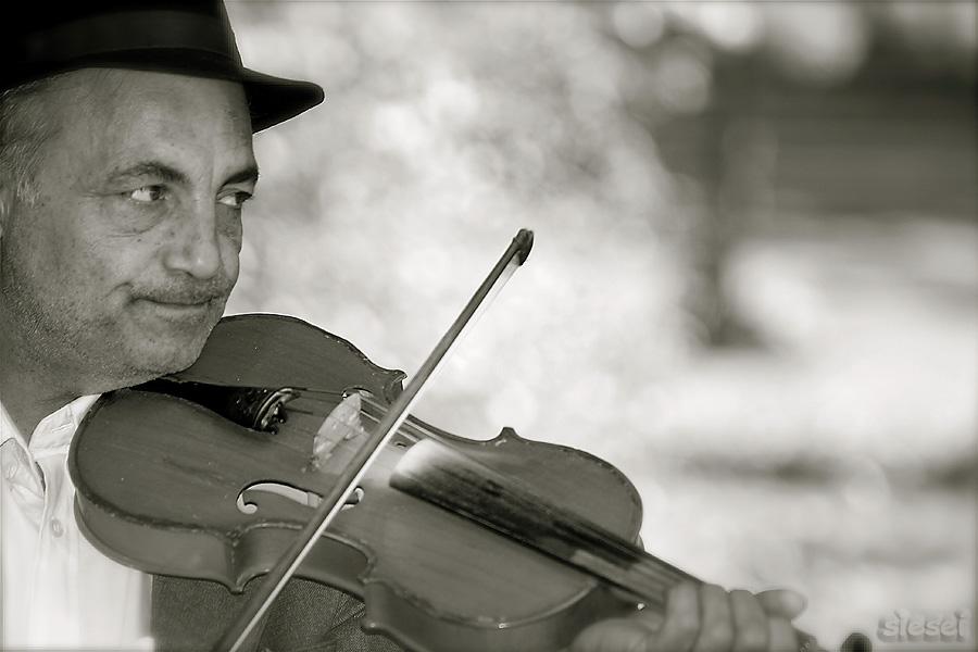 Bild geige violine ungemach unwohl von christian h nig for Christian hoenig
