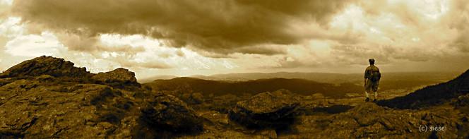 Zuversicht, Wolf, Felsen, Panorama, Herbst, Sepia