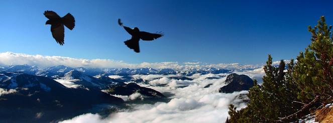 Sonneck, Dolen, Panorama, Fotografie, Überdenwolken, Höhe