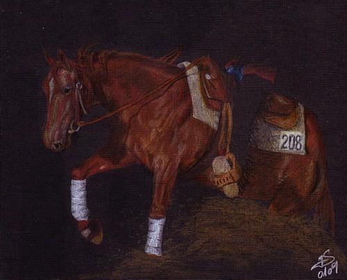 Stop, Pferde, Viertel, Zeichnung, Reining, Western