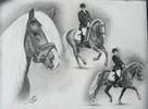 Pferde, Pony, Haflinger, Hengst