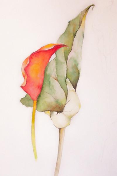 Farben, Aquarellmalerei, Üben, Malerei, Leichtigkeit, Skizze
