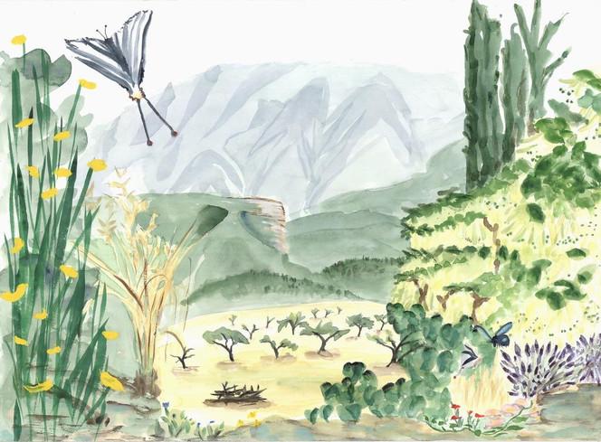Landschaft, Mont, Aquarellmalerei, Provence, Ventoux, Insekten