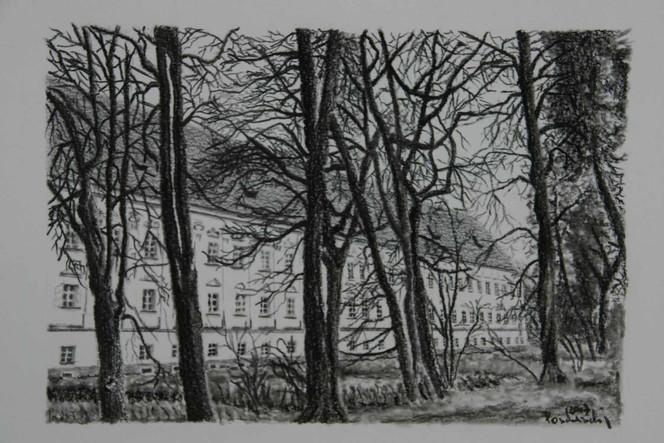 Botka, Baum, Landschaft, Schloss, Viktring, Musikforum viktring