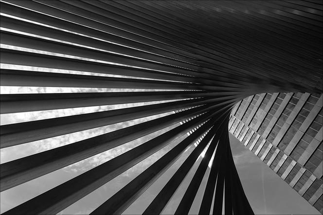 Fotografie, Abstrakt