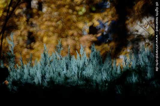 Digital, Impressionismus, Landschaft, Fotografie, Druck, Digitale kunst