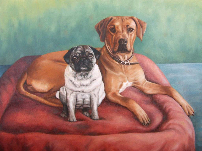 Tiermalerei, Rhodesian, Hund, Ridgeback, Hundeportrait, Ölmalerei