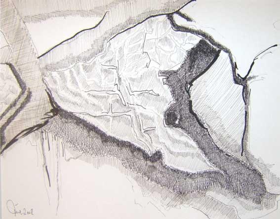Raschen, Muschle, Ohr, Meer, Zeichnungen, Abstrakt