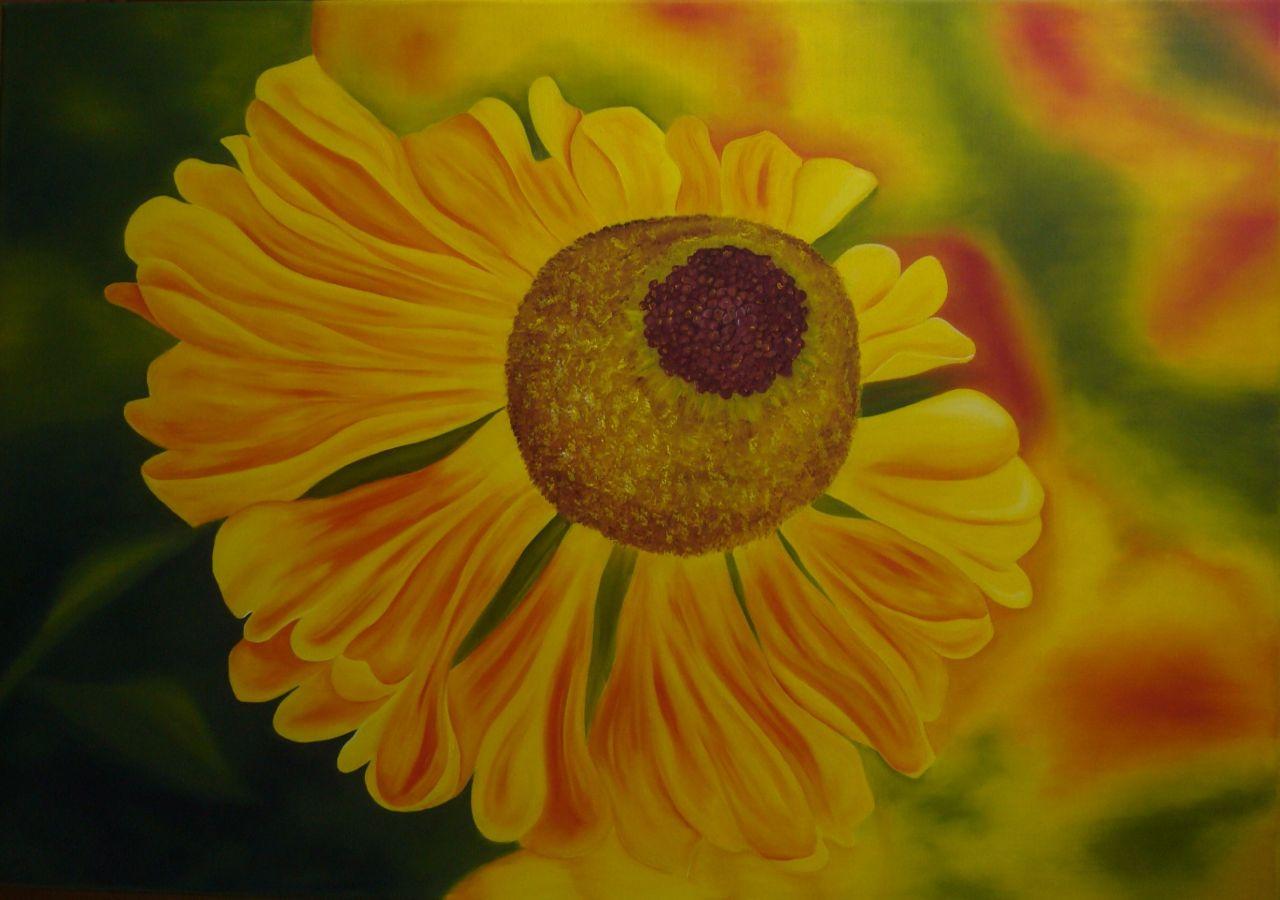 Bild Herbst, Blumen, Sonne, Gelb von Claudia Unterleitner