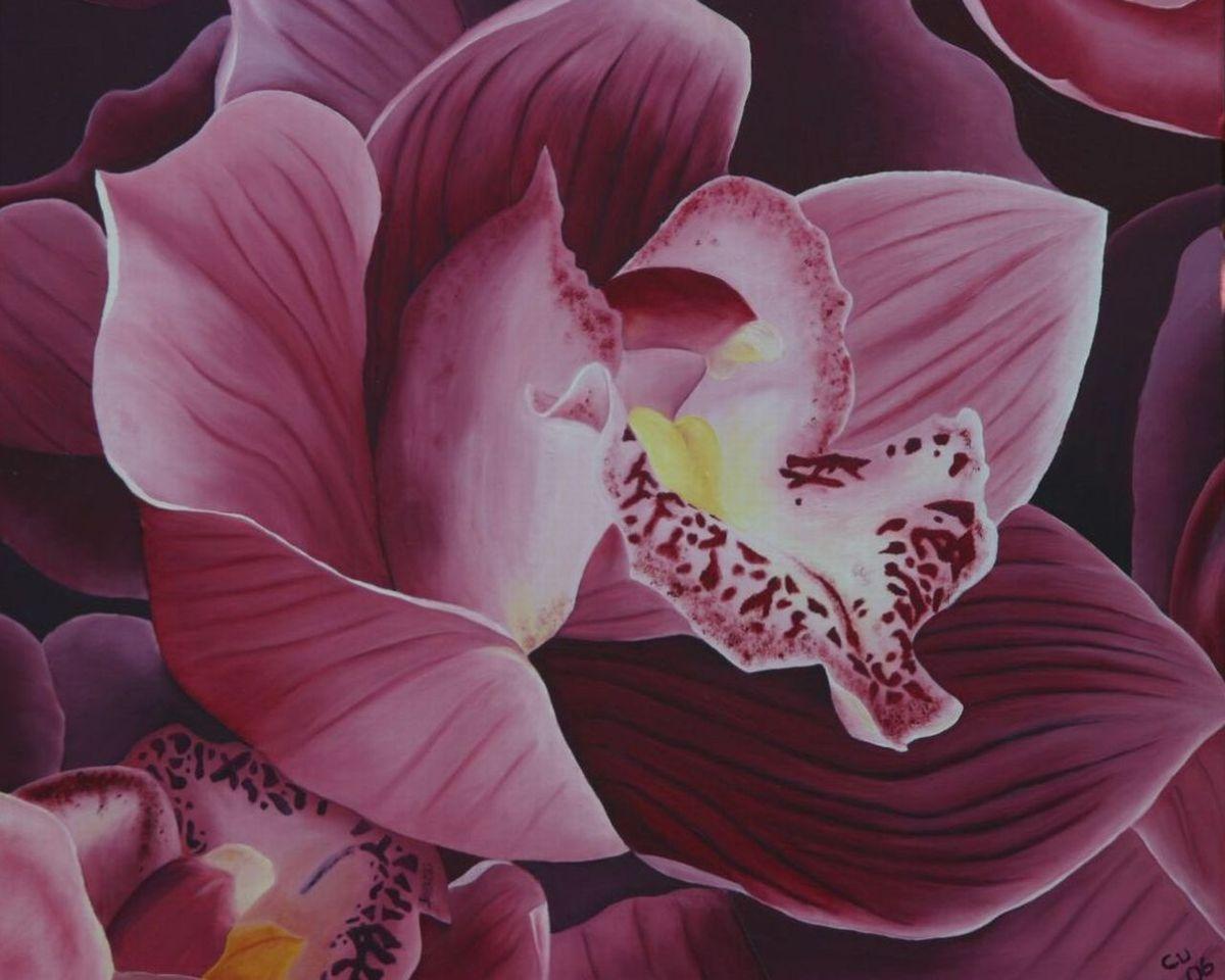 orchidee blumen garten realismus bl hen von claudia unterleitner bei kunstnet. Black Bedroom Furniture Sets. Home Design Ideas