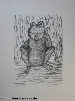 Zeichnungen, Frosch