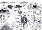 Tiere, Afrika, Zeichnung, Zeichnungen