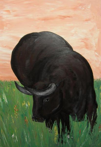 Stier, Wiese, Grün, Malerei