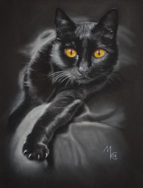 Katze, Kater, Malerei, Tiere