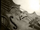 Zeichnung, Stillleben, Bleistiftzeichnung, Violine