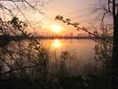 Busch, Sonnenaufgang, Landschaft, Fotografie