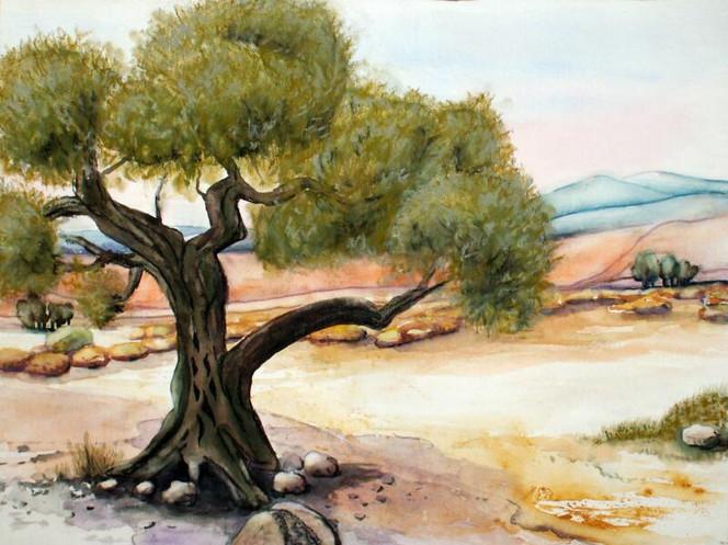 Aquarellmalerei, Landschaft, Olivenbaum, Pastellmalerei, Baum, Kreta