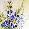 Blumen, Aquarell, Aquarelle blumen, Rittersporn