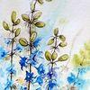 Blumen, Rittersporn, Aquarell, Aquarelle blumen