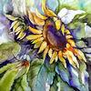 Blumen, Aquarell, Aquarelle blumen, Sonnenblumen