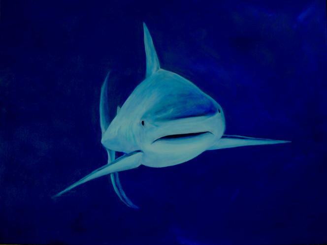 Wasser, Tiere, Unterwasser, Acrylmalerei, Hai, Malerei