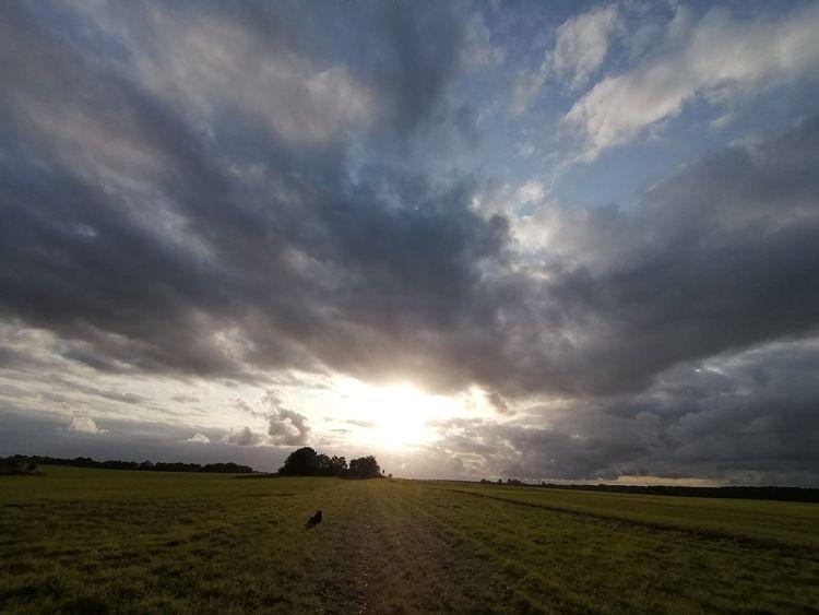 Brandenburg, Abend, Wolken, Sonnenuntergang, Himmel, Fotografie